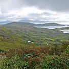 Caherdaniel - ring of Kerry - Ireland by Arie Koene
