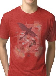 How to train your dragon Tri-blend T-Shirt