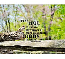 Fear Not Matthew 10 Photographic Print
