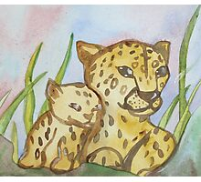 Cheetahs Photographic Print