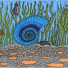 Sea Shell by HeidiArts