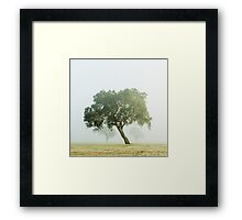 Near Mansfield there leans a tree. Framed Print