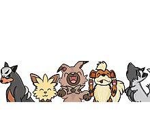 Pokemon Pups Photographic Print