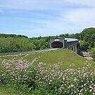 Smolen-Gulf Covered Bridge by Jack Ryan