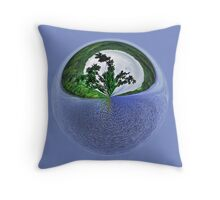 Water, water, everywhere. Throw Pillow