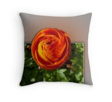 Escape from the frame Throw Pillow