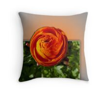 From Out of the Frame Throw Pillow
