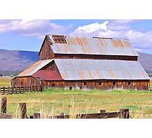 At The Farm Photographic Print