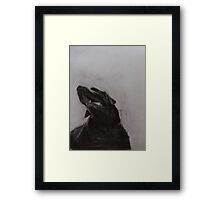 Black and white drawing, Labrador Retriever Framed Print