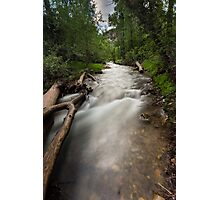 Salt Creek in Bear Canyon Utah Photographic Print