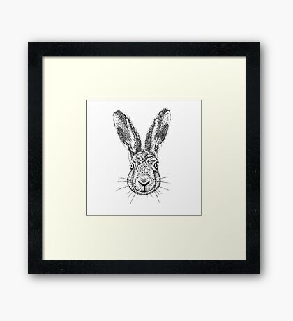 Hare Portrait Ink Drawing Framed Print