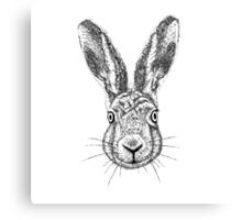 Hare Portrait Ink Drawing Canvas Print