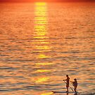 Long Boards at Sunset by Imagery