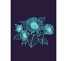 Teal Sunflowers Photographic Print