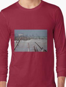 Sea Gulls Perch Long Sleeve T-Shirt
