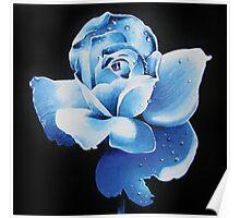 Blue rose 2 Poster