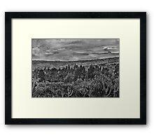 Ecuador Landscape Scene at Andes Range Framed Print