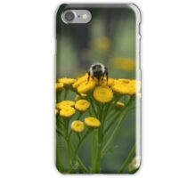 Bumble Bee on Yellow Wildflower iPhone Case/Skin