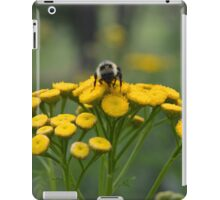 Bumble Bee on Yellow Wildflower iPad Case/Skin
