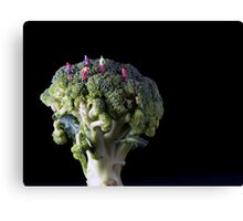 Broccoli People Canvas Print