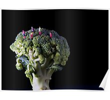 Broccoli People Poster