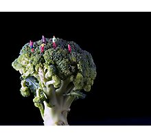 Broccoli People Photographic Print