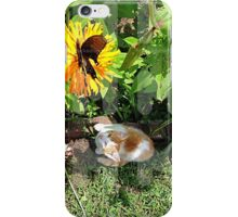 Cat and Flower iPhone Case/Skin