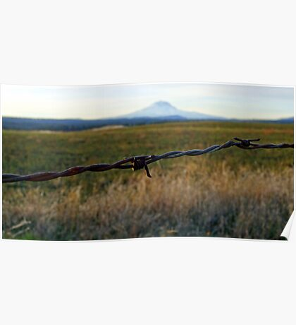 Mt Adams barbed wire Poster