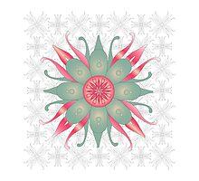 Floral Designs (5) by catherine barnhoorn