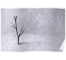 Miniature Diorama of a Tree in Snow Poster