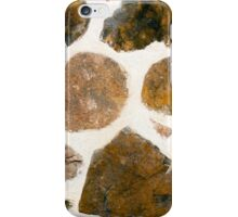 Interior Brown Stone Wall Texture iPhone Case/Skin