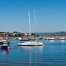 Teignmouth Harbour by Susie Peek