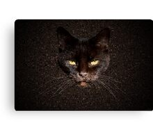Chocolate cat Canvas Print