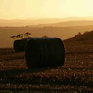 Hay Roll  Autumn Sunset Derry Ireland  by mikequigley