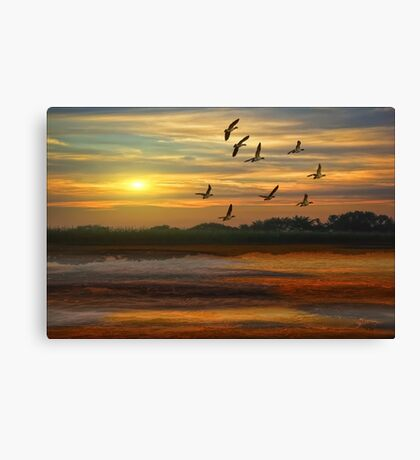 A Wonderful Day Canvas Print