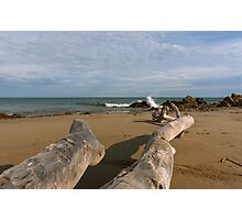 Driftwood on the Beach Photographic Print