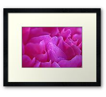 The Passion Pit Framed Print