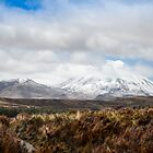 Mount Ruapehu  New-Zealand by 29Breizh33