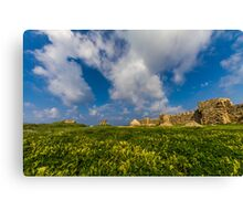 Spring time in the casttles Canvas Print