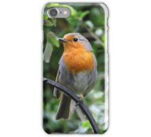 The Gardener's Companion iPhone Case/Skin