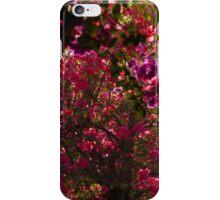 bougainvilleas - buganvillas iPhone Case/Skin