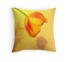 Shadow Throw Cushion Throw Pillow