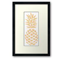 Pineapple texture 1 Framed Print