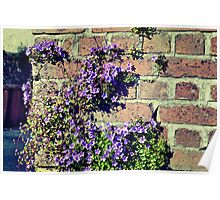 Flower Wall Poster