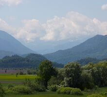 Murnau Moos Pillow With Alpspitze by SmoothBreeze7