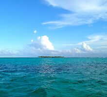 Blues, Tobagos Cays by JCMM