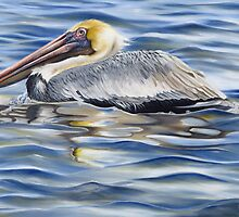 Cedar Point Pelican by Phyllis Beiser