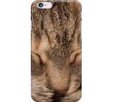 Sleeping Devil iPhone Case/Skin