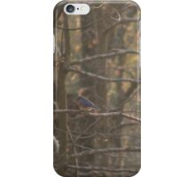 Autumn Woodlands with Bluebird iPhone Case/Skin