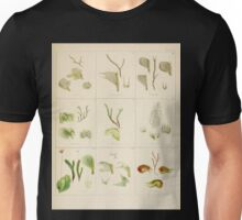 The botany of the Antarctic voyage of H M  discovery ships Erebus and Terror in the Years 1839 1843 Joseph Dalton Hooker V1 145 Unisex T-Shirt